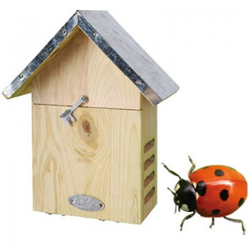 code DCT-WA05 - Lady Bird House