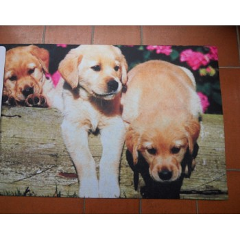 Code DCT-RB185 - Doormat (printed) - Puppies