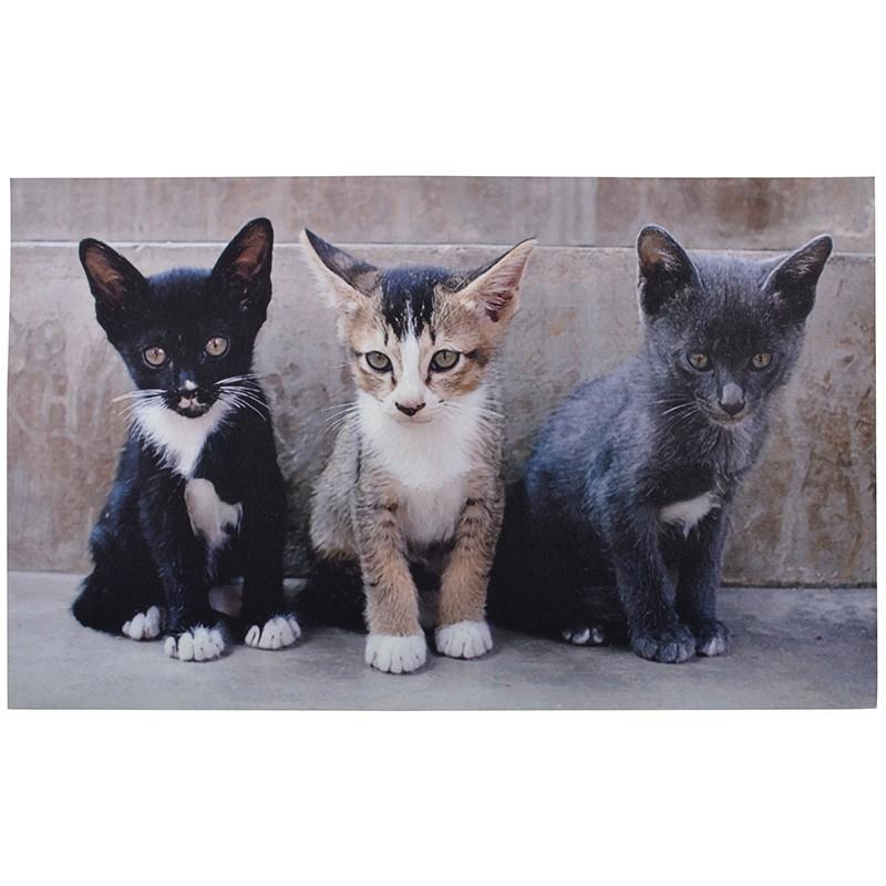 code DCt-RB142 - Doormat (printed) - Kittens