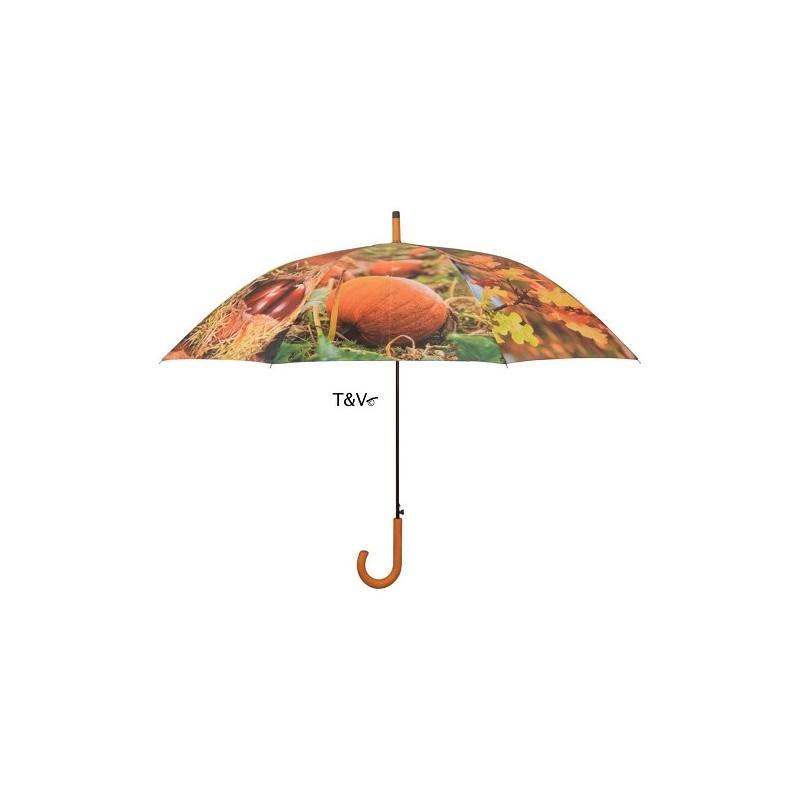ref.DCT-TP208 - Chapéu de chuva- Outono